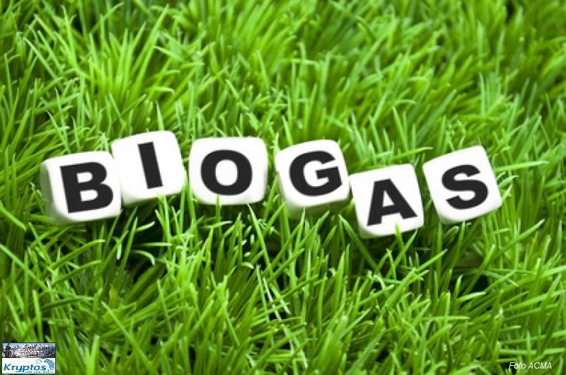 KL Cesec CV 2014.02.04 Biogas