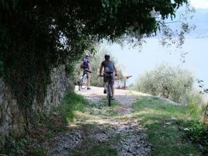 sentiero-lago-di-garda